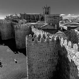 catedral y muralla de Avila by -. Phœnix .- - Buildings & Architecture Public & Historical ( muralla, avila, catedral )