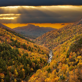 Linville Gorge Composite by Tom Moors - Landscapes Mountains & Hills ( fall leaves, fall colors, foliage, fall, sunrise, linville gorge, composite )