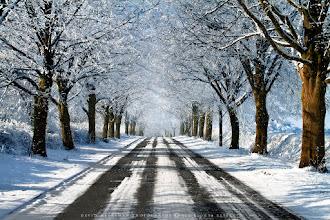Photo: To Rosseignies, Belgium