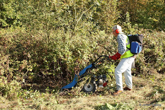 Photo: Stuart geared up and going for it during the Big Mow 2011