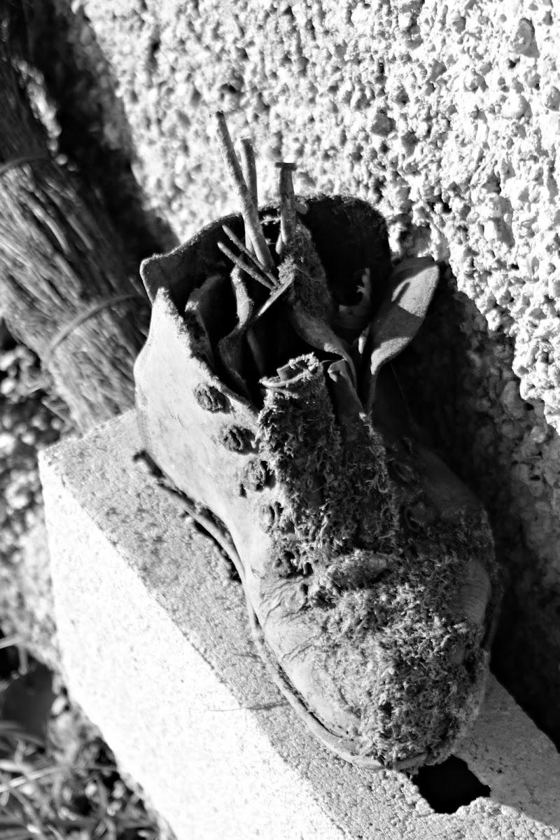 Vecchio scarpone di faebea