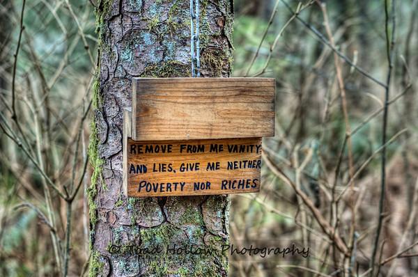 Photo: The Wacky Woods - Fanny Bay, BC, Canada    George Sawchuk: Outdoor Art Exhibit