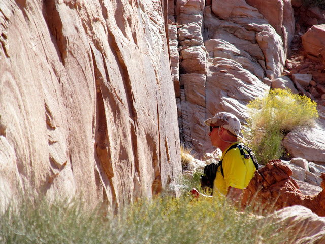 Alan scanning the cliffs
