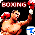 Boxing Night 3D icon