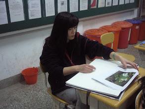 Photo: 20110317繪畫與本地風光005