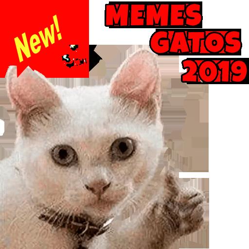 Nuevos Memes De Gatos 2020 Wastickerapps Aplikasi Di Google Play