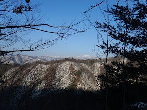 後方に白山方面(白山・栗ヶ岳など)
