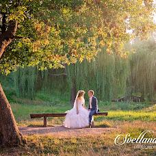 Wedding photographer Svetlana Leone (SvetlanaLeone). Photo of 18.06.2016