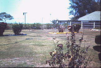 Photo: Grounds outside the SGTs Mess, RAAF Darwin, (Jun 1969)