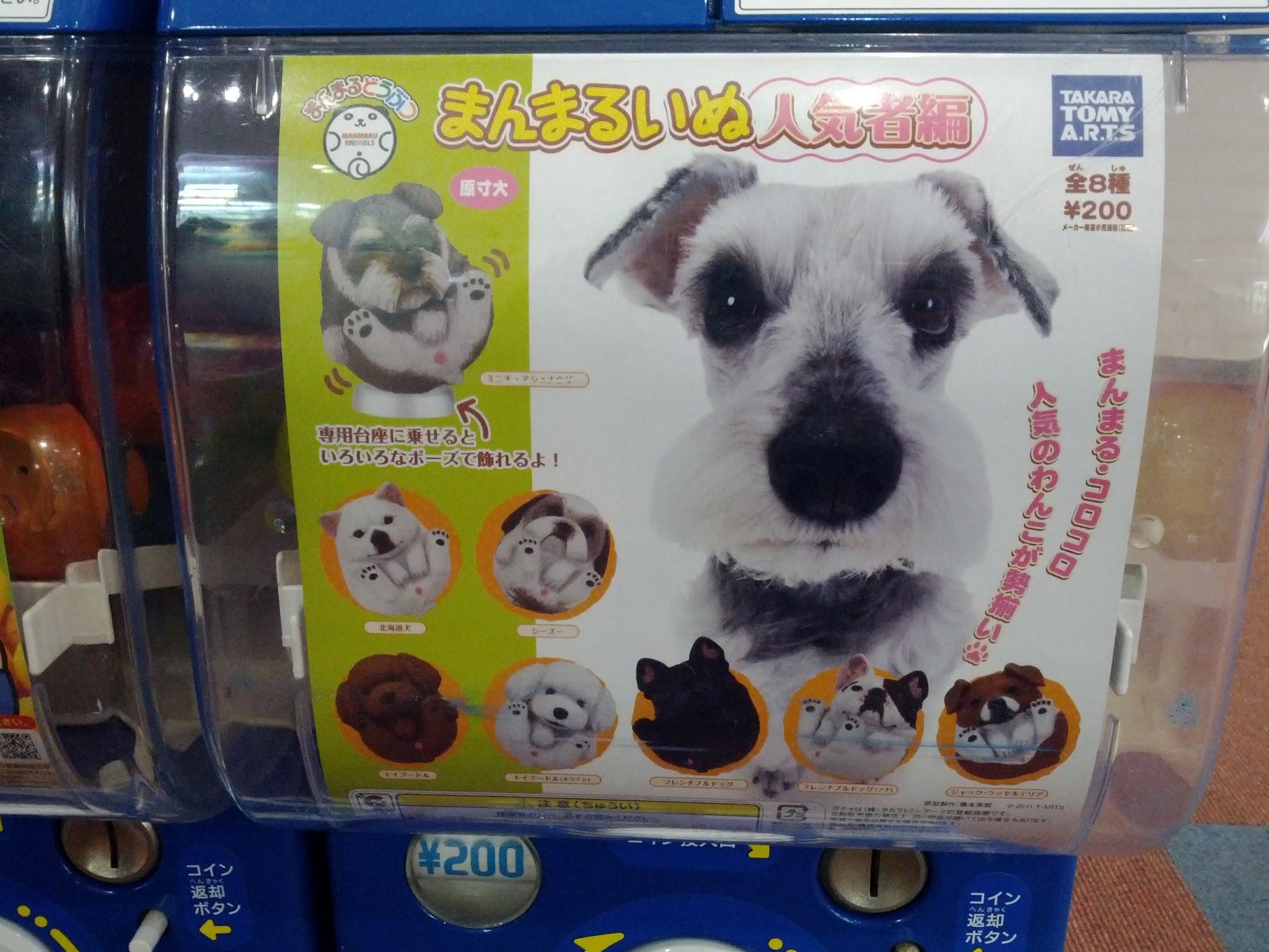 Photo: It's um... dog bum capsule toys!