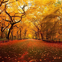 Autumn HD Wallpaper icon