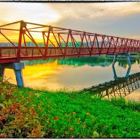Lo Halus Bridge by Ram Suson - Buildings & Architecture Bridges & Suspended Structures ( bridge, punggol promenade, lor halus bridge, singapore )