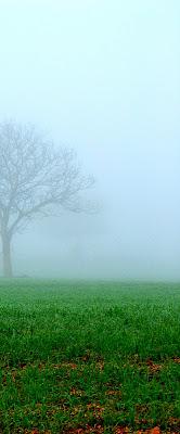 nebbia a metà ..... di Nicola UrsoPh