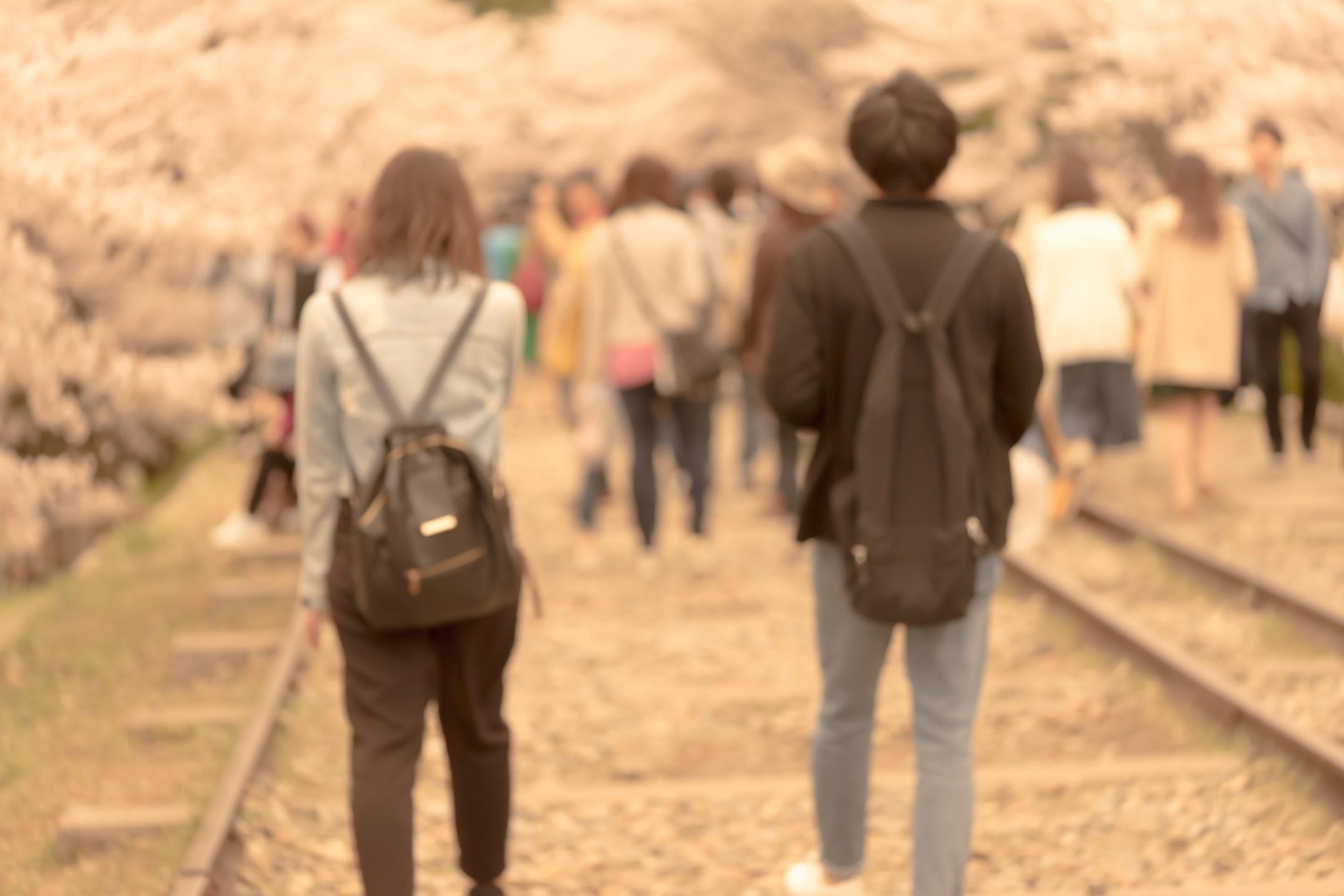 京都 桜 蹴上インクライン4