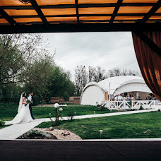 Wedding photographer Sasha Nikiforenko (NeKifir). Photo of 26.05.2017