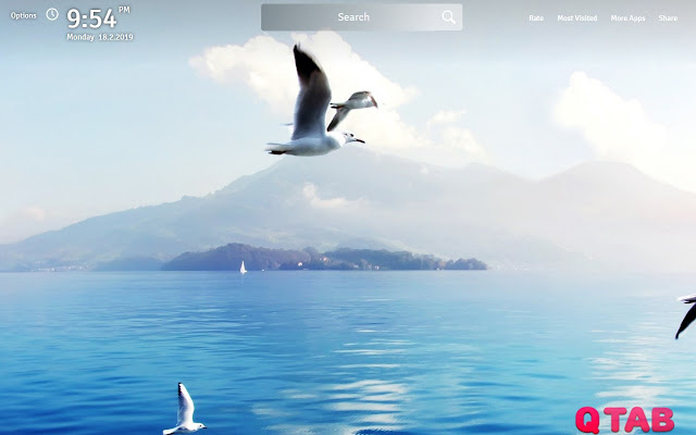Beach and Ocean Wallpapers Theme New Tab
