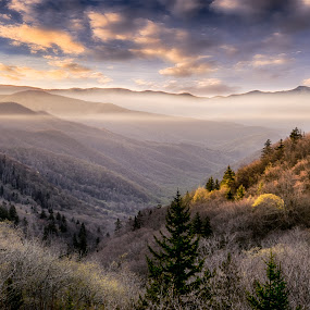Foggy Valley by Drew Campbell - Landscapes Mountains & Hills