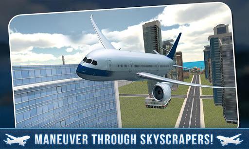 本物のエアパイロットフライトプレーン3D