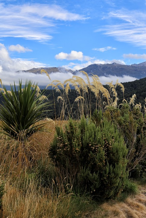 Nowa Zelandia - krajobraz