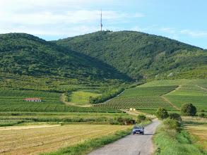 Photo: Projíždíme známou maďarskou vinařskou oblastí Tokaj
