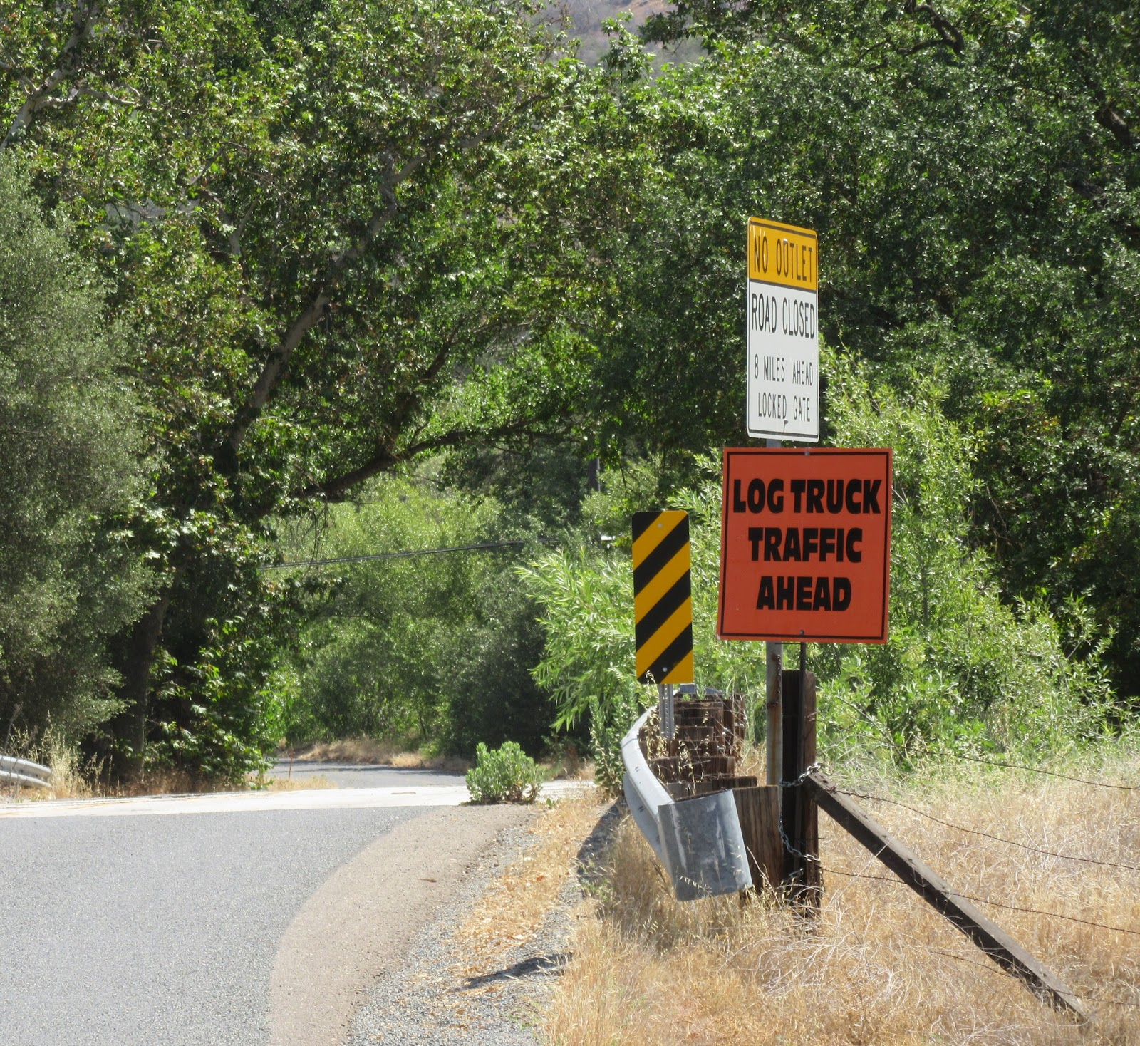 Climbing Bear Creek Road by bike - start of climb - logging truck road sign.