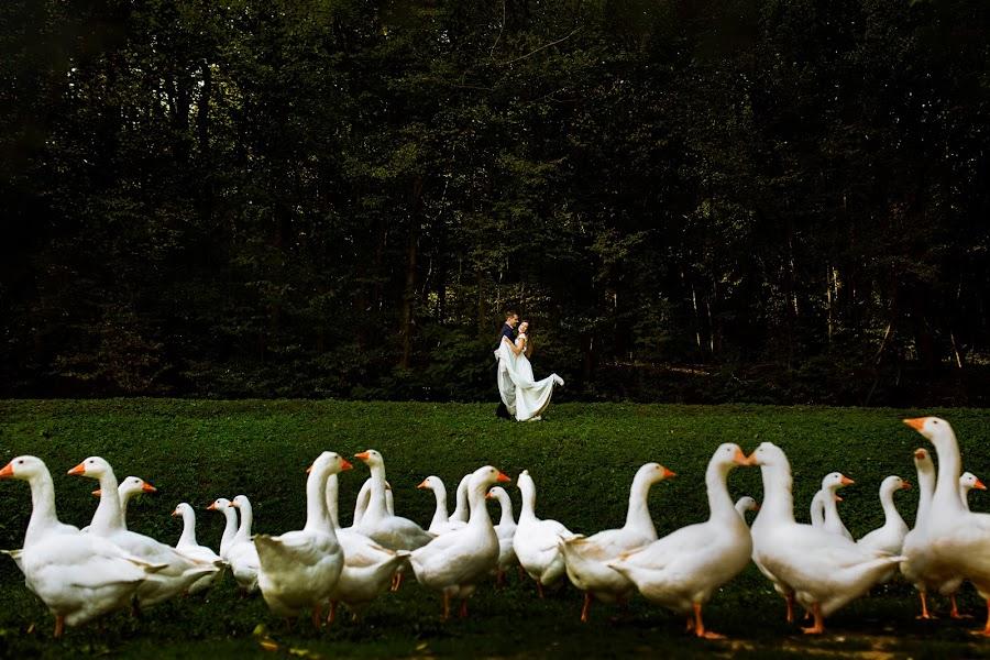 Wedding photographer Curticapian Calin (calin). Photo of 13.05.2019