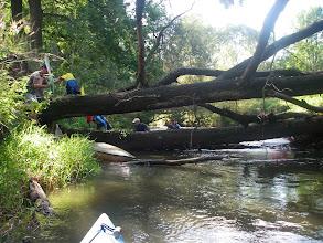 Photo: jeszcze z drzewami