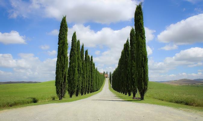 Terra di Toscana