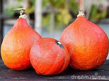 OMG this cant be squash ! ( red kuri )