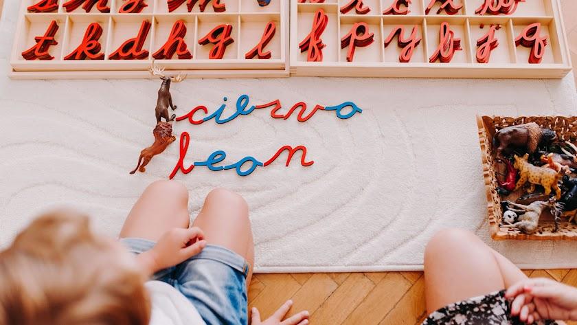 Actividades adaptadas en Ambiente para Crecer. Espacio Montessori en Almería