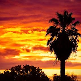 by Doug Skinner - Landscapes Sunsets & Sunrises