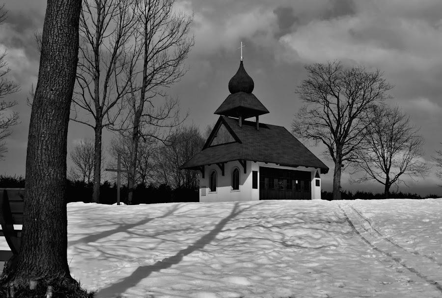 chapel by Katka Kozáková - Black & White Buildings & Architecture ( snow, trees, chapel, evening, shadows,  )