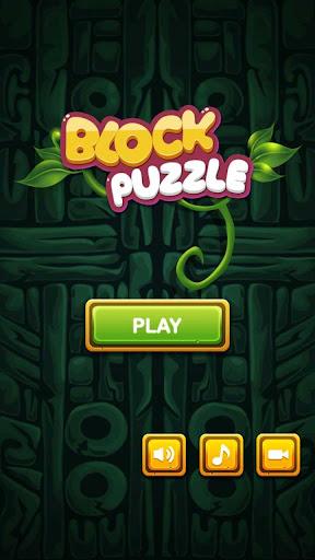 Block Puzzle 1.0.6 Cheat screenshots 5