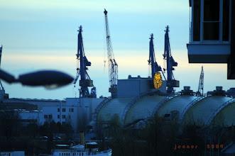 """Photo: Hamburg Hafencity """"König der Löwen"""""""