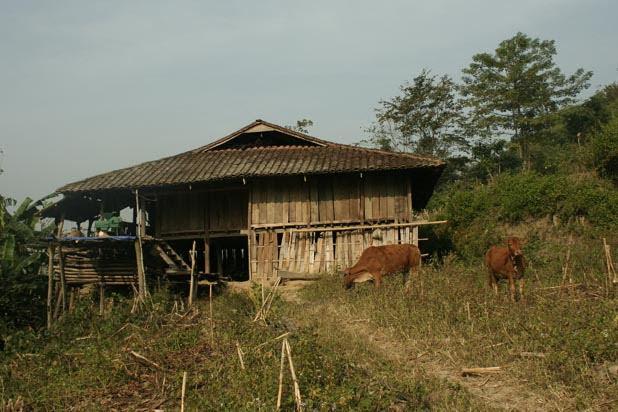 Homestay in Bao Lac