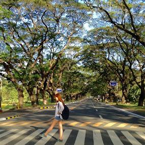 Trees in school by Victoria Gonzales - City,  Street & Park  Street Scenes ( #trees #school #naturelover #bestplace #freshair,  )