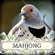 Hidden Mahjong: Winter Birding