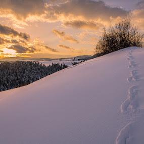 Steps... by Peter Zajfrid - Landscapes Sunsets & Sunrises ( pohorje, winter, slovenija, sunset, slovenia, snow, steps )