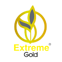 Extreme Gold Business icon