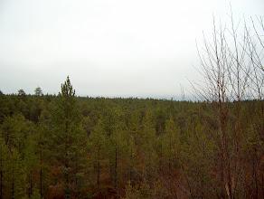 Photo: Tähtitornin katseluaukosta etelään avautuva maisema.