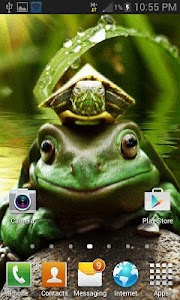 Green Frog Live Wallpaper screenshot 1