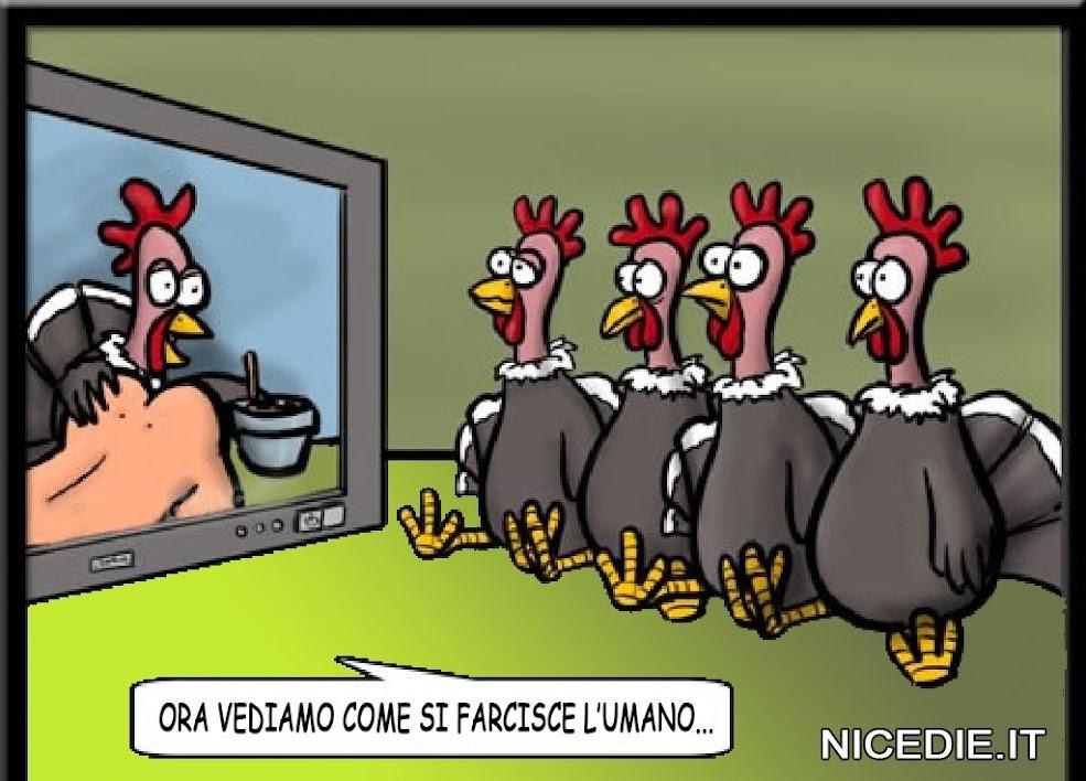 le galline guardano la tv, una cuoca (gallina) sta imbottendo un essere umano...