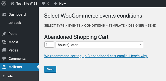 Select timing for abandoned cart email
