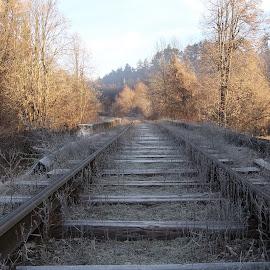 Ден by Georgi Kolev - Transportation Railway Tracks ( треви., небе., слънце., сенки., релси., дървета. )