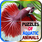 Puzzles of Aquatic Animals
