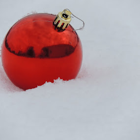 RED BULB IN SNOW by Laura Cummings - Public Holidays Christmas ( red bulb in the snow,  )