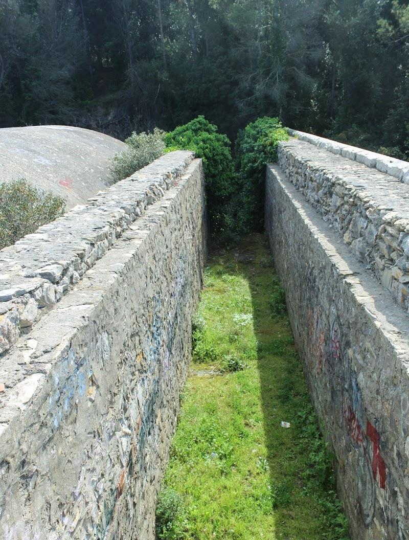 Il muro nella foresta di Marco_52