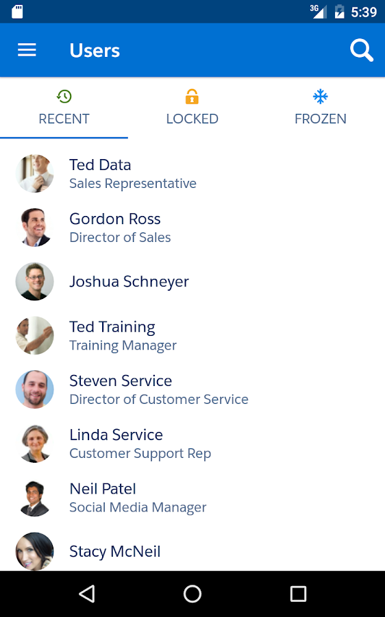SalesforceA- screenshot