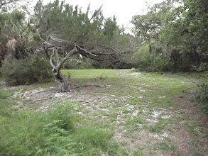 Photo: Seminole Rest has a lot of open ground which will make Geoprobing pretty simple.