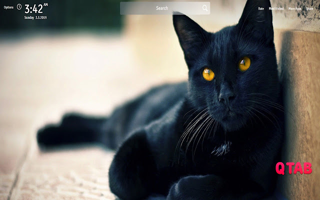 Black Cat Wallpapers Black Cat New Tab